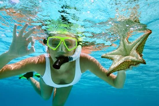 Miami snorkeling tour
