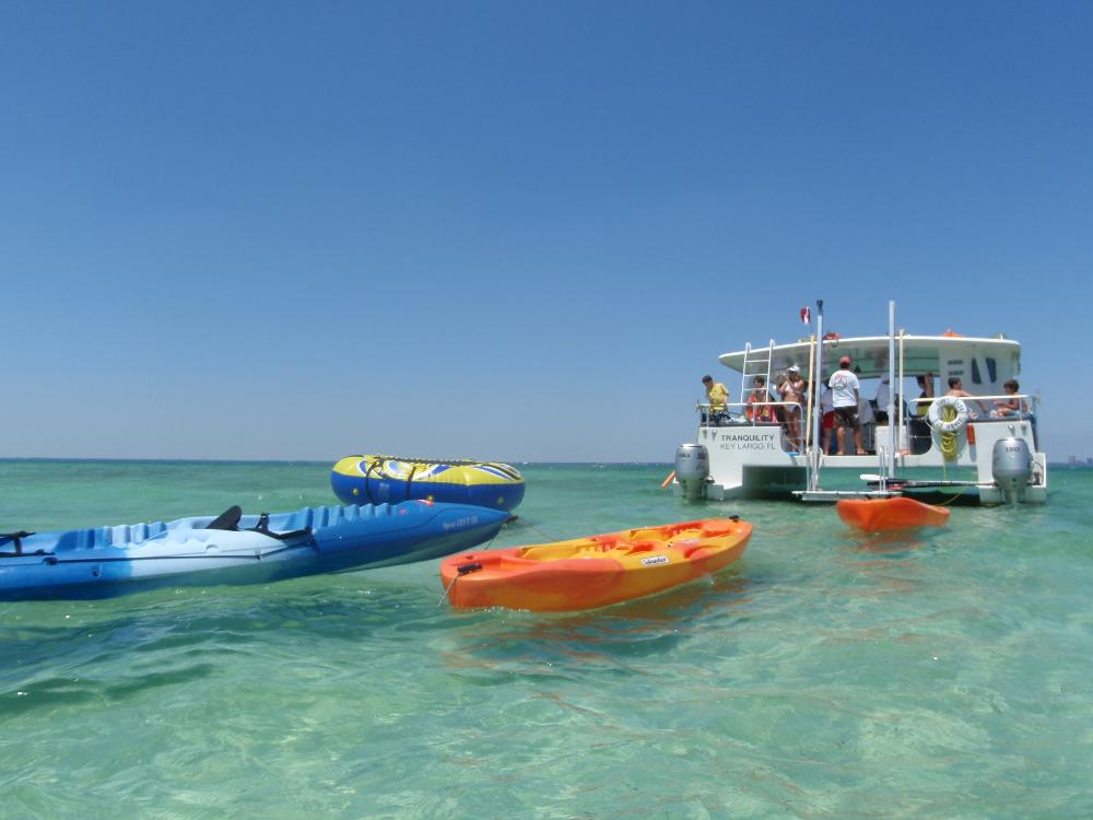 Island Adventure Day Cruise From Miami Wahooa Watersports - Cruises from miami